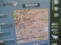 鶴見川サイクリングロード